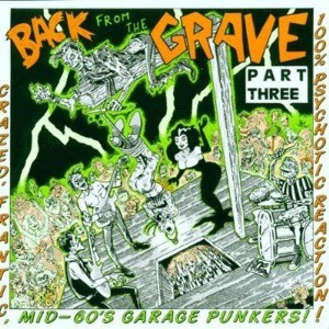 V.A. - Back from The Grave Vol.3 CD
