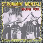 V.A. - Strummin Mental Vol.4 LP