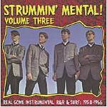 V.A. - Strummin Mental Vol.3 LP