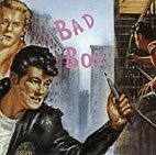 V.A. - Bad Boy CD