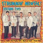 V.A. - Strummin Mental Vol.2 LP
