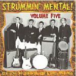 V.A. - Strummin Mental Vol.5 LP
