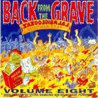 V.A. - Back From The Grave LP Vol.8