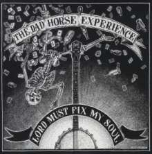 "THE DAD HORSE EXPERIENCE - Lord Must Fix My Soul 7"" ltd."