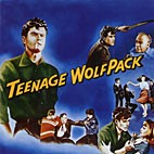 V.A. - Teenage Wolfpack CD